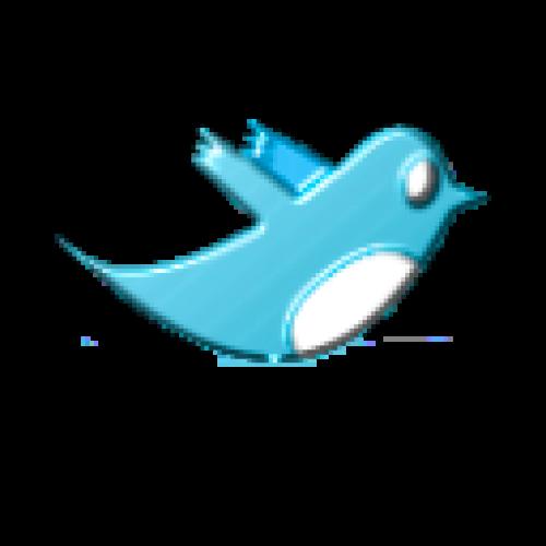 لمتصفح قوقل كروم | افضل اضافه لمتابعه تويتر Silver Bird