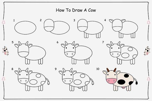 cow خطوات رسم بقرة خطوات رسم بقرة cowDRWA