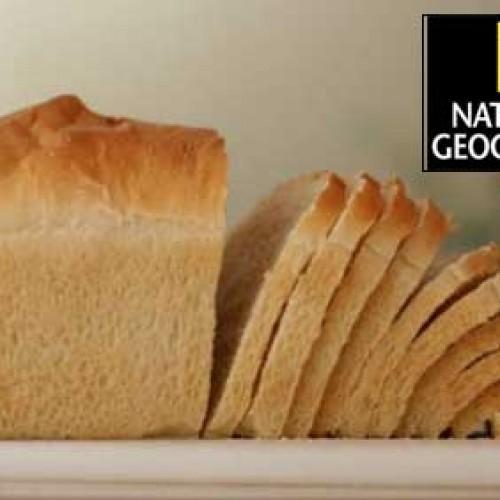[ وثائقي ] ناشيونال جيوغرافيك في مصنع لوزين لانتاج خبز التوست