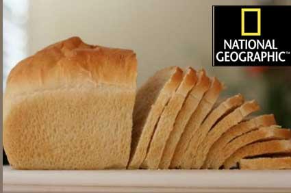 [ وثائقي ] ناشيونال جيوغرافيك في مصنع لوزين لانتاج خبز التوست [ وثائقي ] ناشيونال جيوغرافيك في مصنع لوزين لانتاج خبز التوست lousin